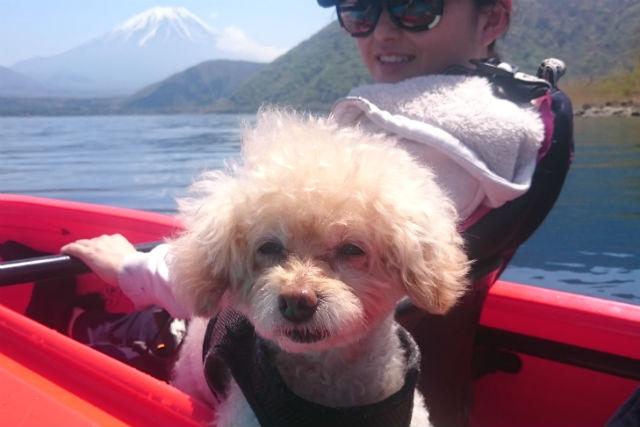 本栖湖アクティビティセンター(ワンちゃんも一緒に楽しめます!)